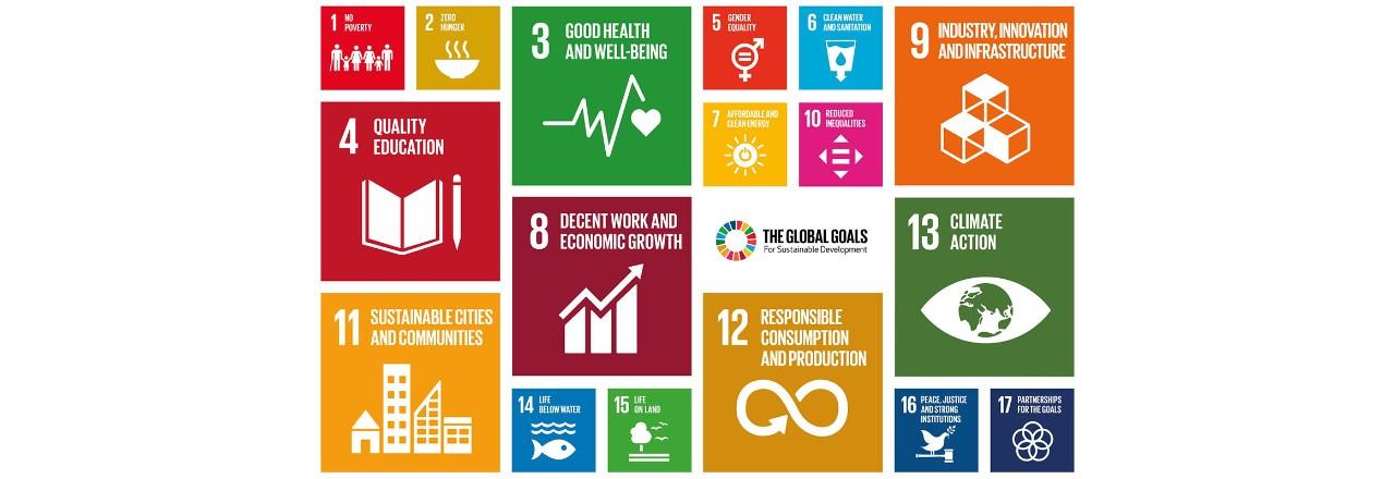 UN 지속 가능 발전 목표